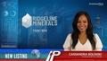 New Listing: Ridgeline Minerals (TSXV:RDG)
