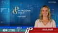 New Listing: Patagonia Gold (TSXV:PGDC)