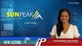 New Listing: Sun Peak Metals (TSXV:PEAK)