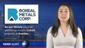 Boreal Metals (TSXV: BMX) acquires additional historic Cobalt property in Sweden