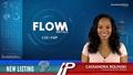 New Listing: Flow Metals (CSE:FWM)
