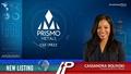 New Listing: Prismo Metals (CSE:PRIZ)