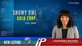 New Listing: Snowy Owl Gold (CSE:SNOW)