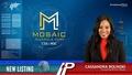 New Listing: Mosaic Minerals (CSE:MOC)