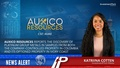 Auxico Resources reports the discovery of platinum group metals in samples from both the company-controlled property in Colombia and its optioned property in Ivory Coast