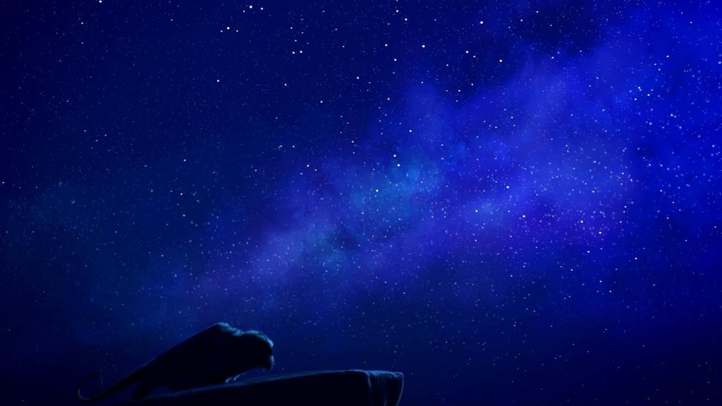 Resultado de imagem para imagens de noite estrelada