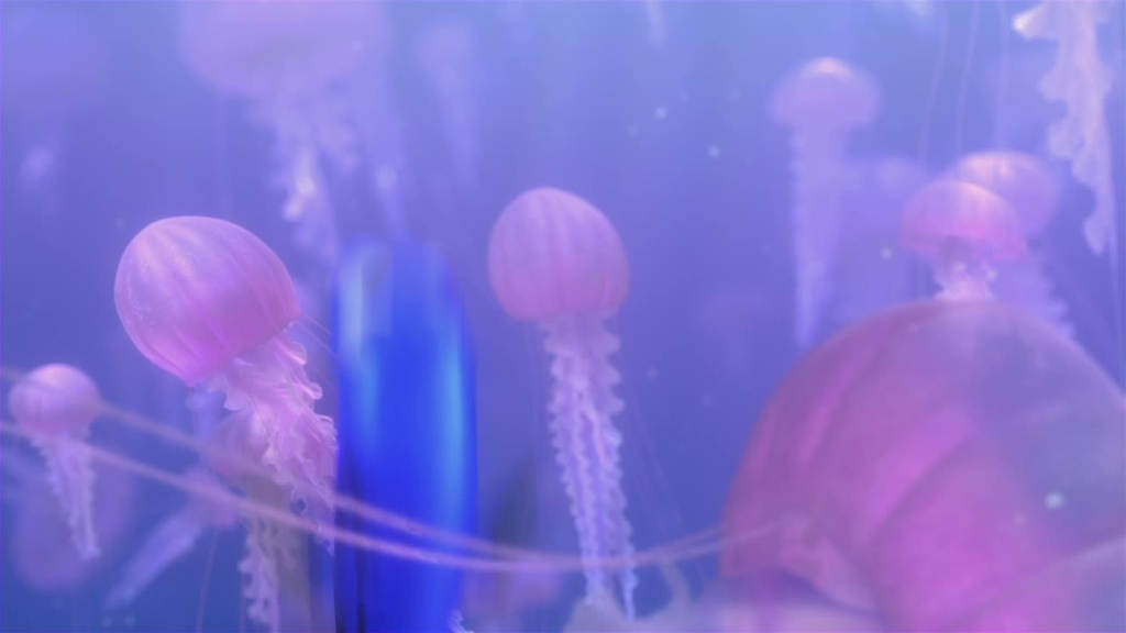 Jellyfish Quotes From Finding Nemo images