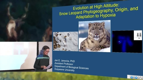 Dr. Jan Janecka - Evolution at High Altitude: Snow Leaopard Phylogeography, Origin, and Adaptation to Hypoxia