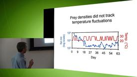 Thumbnail for entry Dr. Jeremy Fox- Causes and Consequences of Spatially-Synchronized Population Dynamics