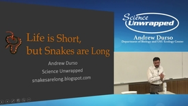 Thumbnail for entry Andrew Durso - Life is Short but Snakes are Long