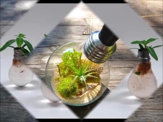 1000 Ideas Para El Reciclaje De Bombitas Planeta Vivo - Ideas-para-el-reciclaje