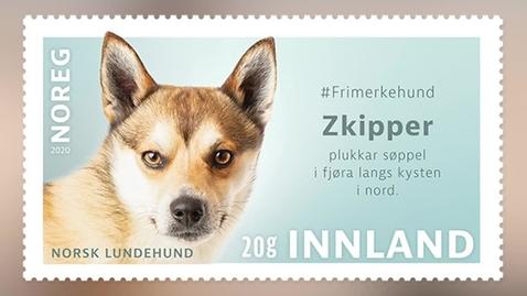 Thumbnail for entry #Frimerkehund: Zkipper