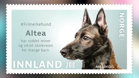 Thumbnail for entry #Frimerkehund: Altea