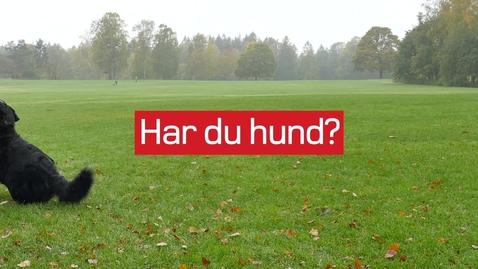 Thumbnail for entry #frimerkehund