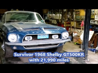 Barn Find 1968 Shelby GT500KR