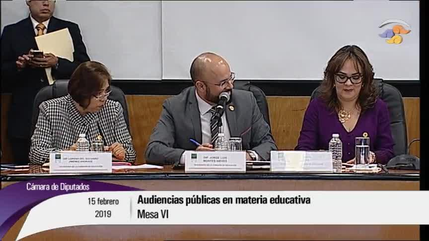 Audiencias públicas en materia educativa. Mesa VI