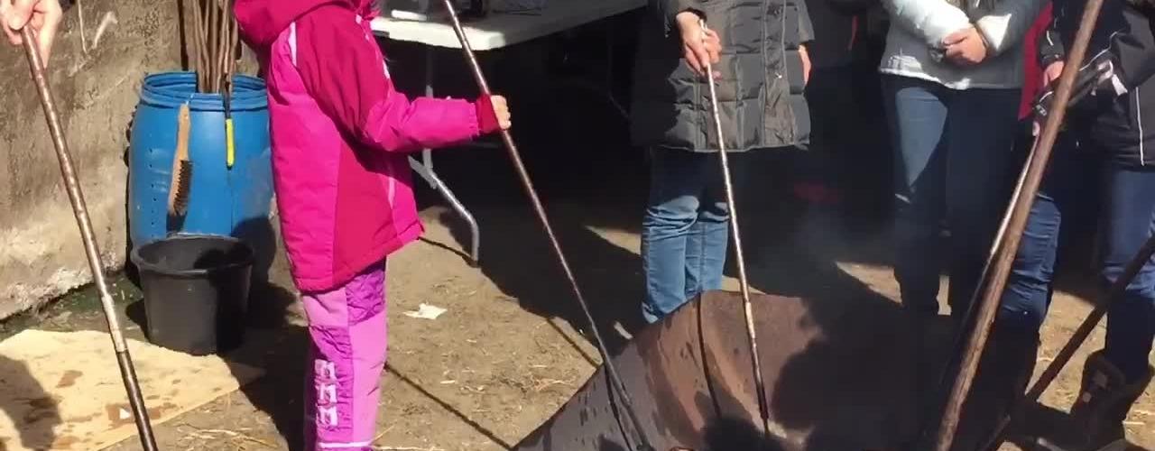 Mange besøgte familen Wiersmar da de lukkede køerne ud