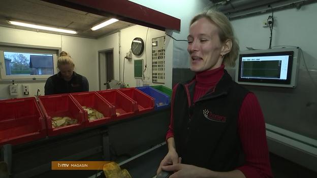 Video thumbnail for Fast Arbejde: Thorsens Chipskartofler