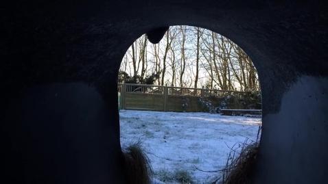 De mindste nød en stille og frostklar dag