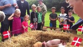 Thumbnail for entry Firkløverweekenden i Rækker Mølle i år med tørretumblerkast og grisevæddeløb