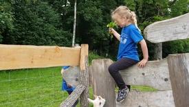 Thumbnail for entry Alt i et-Skolen, Klinkby besøger Wow Park