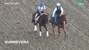Gunnevera Had An Easy Gallop at Pimlico on May 18th, 2017 for the Preakness Stakes