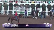 Stormy Liberal (Saddle Number 613) and Roy H (Saddle Number 508) Schooled in the Gate at Del Mar on November 2nd, 2017