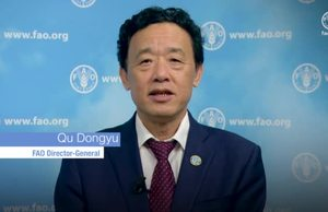 FAO DG Message on WFD 19 English