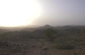 Locust outbreak in Yemen