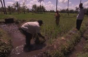 Broll Land and Water Management in Tanzania