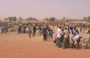 Broll Action Against Desertification Initiative in the Sahel