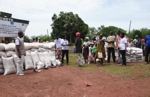 Seeds for change in Central African Republic