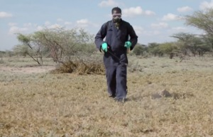 FAO celebrates food hero in the fight against Desert Locust in Kenya