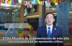 Día Mundial de la Alimentación 2021 : mensaje en vídeo del Director General de la FAO