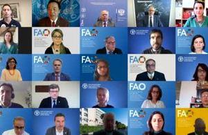 FAO nominates European Space Agency astronaut Thomas Pesquet as Goodwill Ambassador