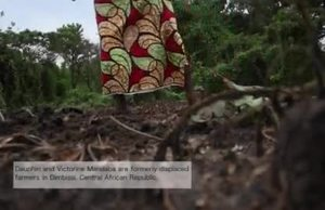 Broll Seeds for change in Central African Republic / Beneficiaries