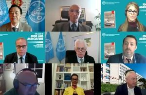 FAO's The State of Food and Agriculture (SOFA) 2020 launch event VNR