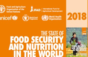 New UN report on global food security and malnutrition -VNR