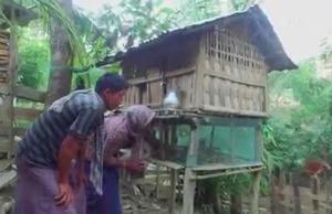 Broll Resilient Livelihoods in Bangladesh