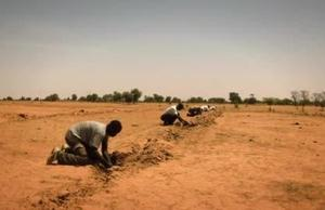 B-roll Desertification