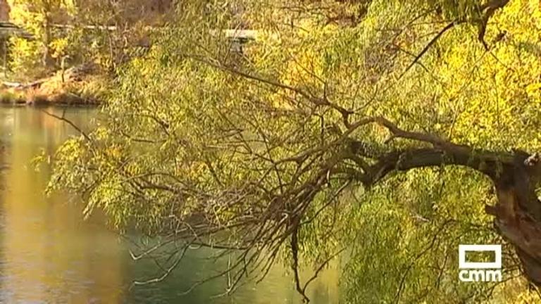 El Júcar es el río más contaminado por plaguicidas tóxicos de España