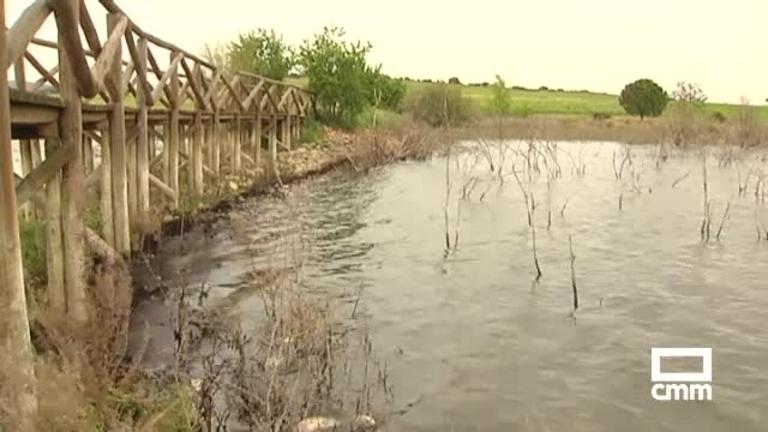 Aparecen peces muertos en el Pantano del Vicario, Ciudad Real