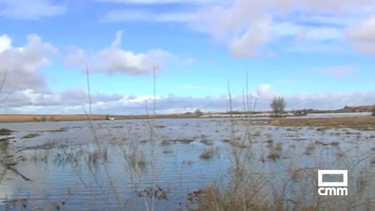 Vídeo: El río Amarguillo se desborda a su paso por Camuñas