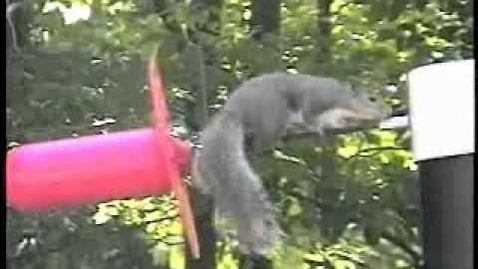 Thumbnail for entry Critter Guard - Solution to Squirrel Caused Power Outages