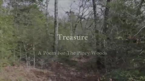 Treasure: A Poem for The Piney Woods by Linda.Koffel
