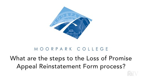 What are the steps to the Loss of Promise Appeal Reinstatement Form process?