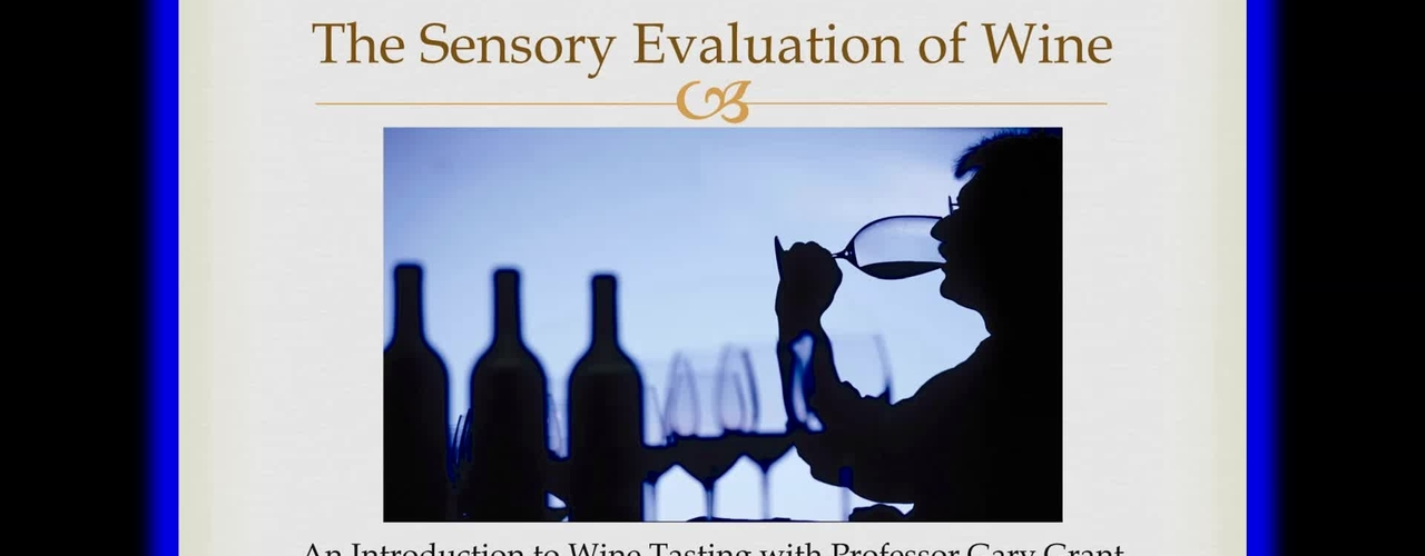 Bucknell 360: The Sensory Evaluation of Wine