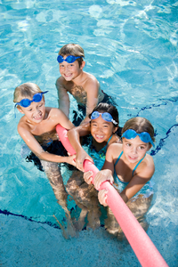 Pool safety for developmentally disabled for Show zfs pool version