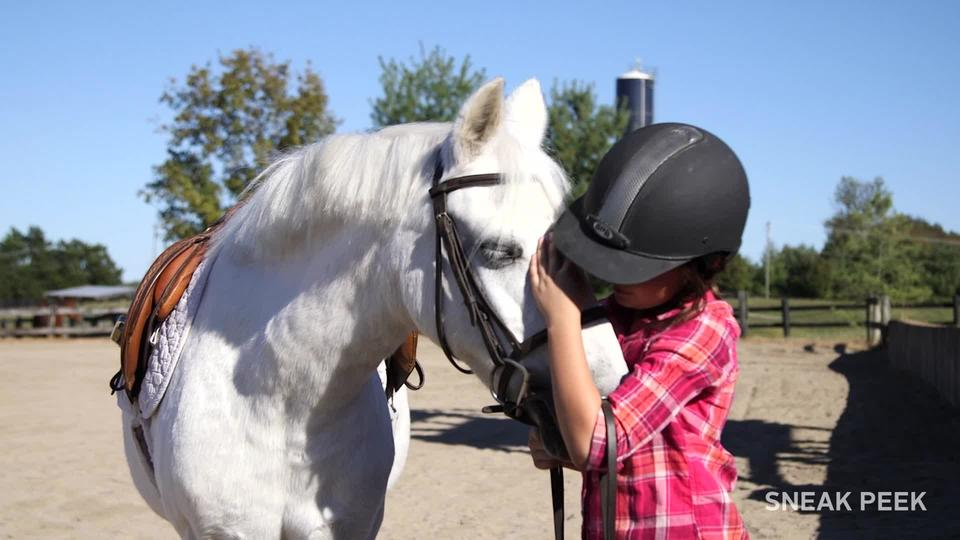 your first horseback riding lesson us equestrian