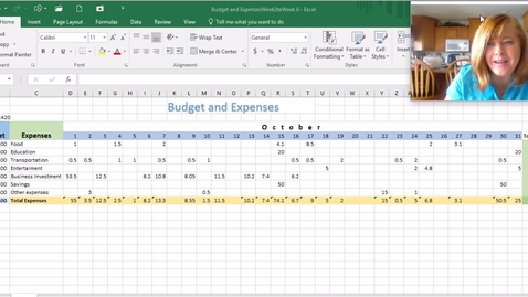 Thumbnail for entry Budget&Expenses Week 6 (3)